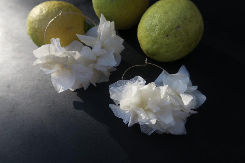 créoles hortensia blanc