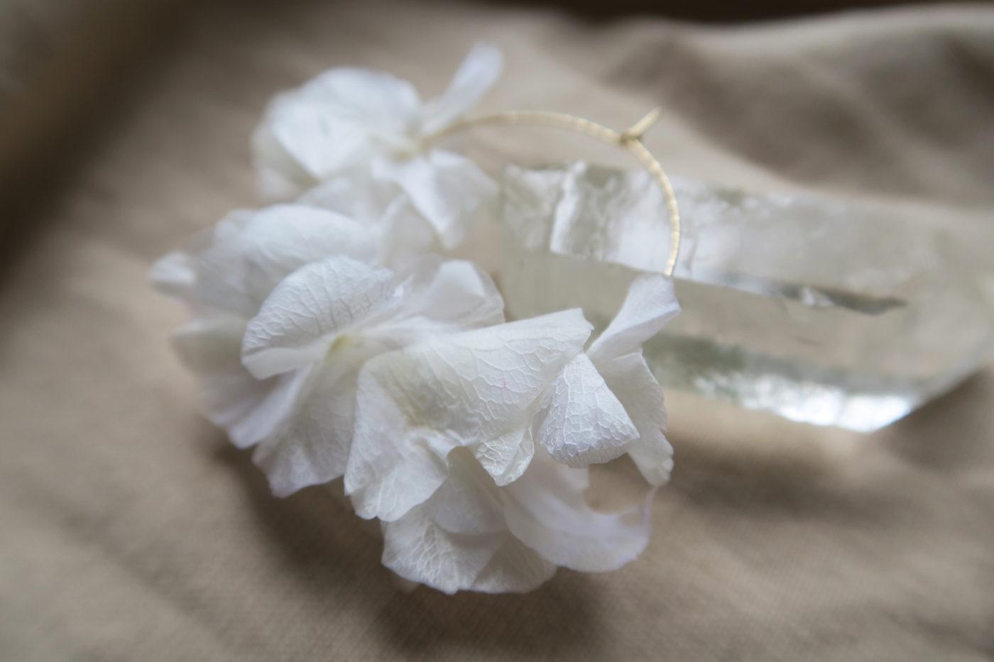 créoles hortensia