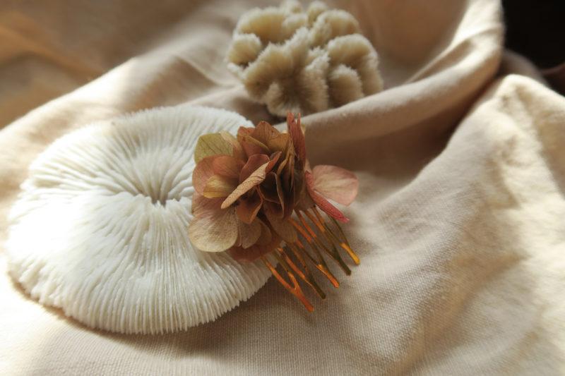 peigne hortensia fleur séchée