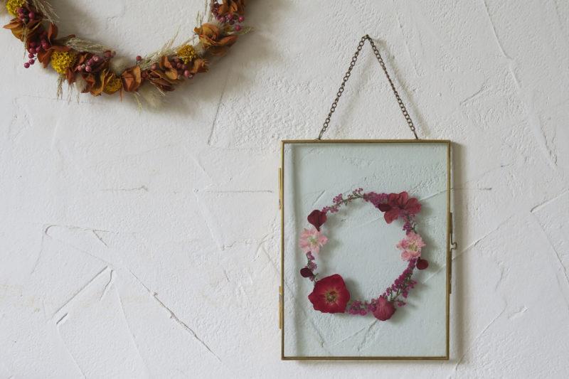herbier rose sécchée