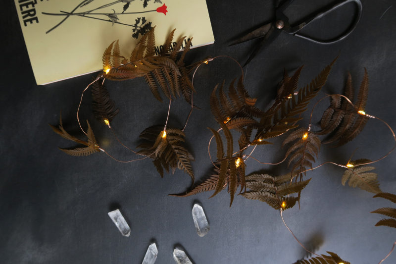 gurilande lumineuse led fleurs séchées fougère brune décoration automne hiver bohème idée cadeau femme