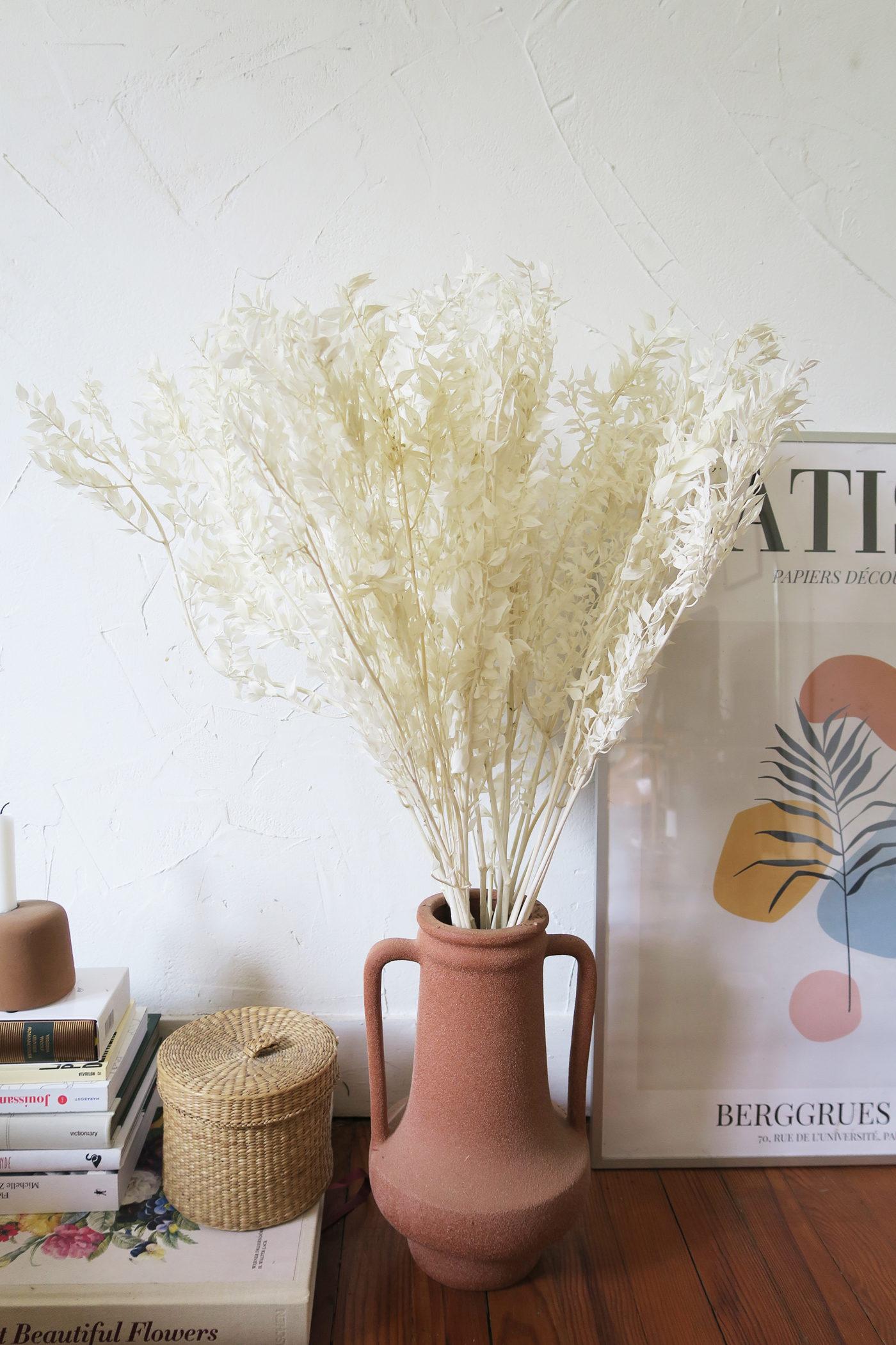 rusucus blanc faux hous séché stabilisé